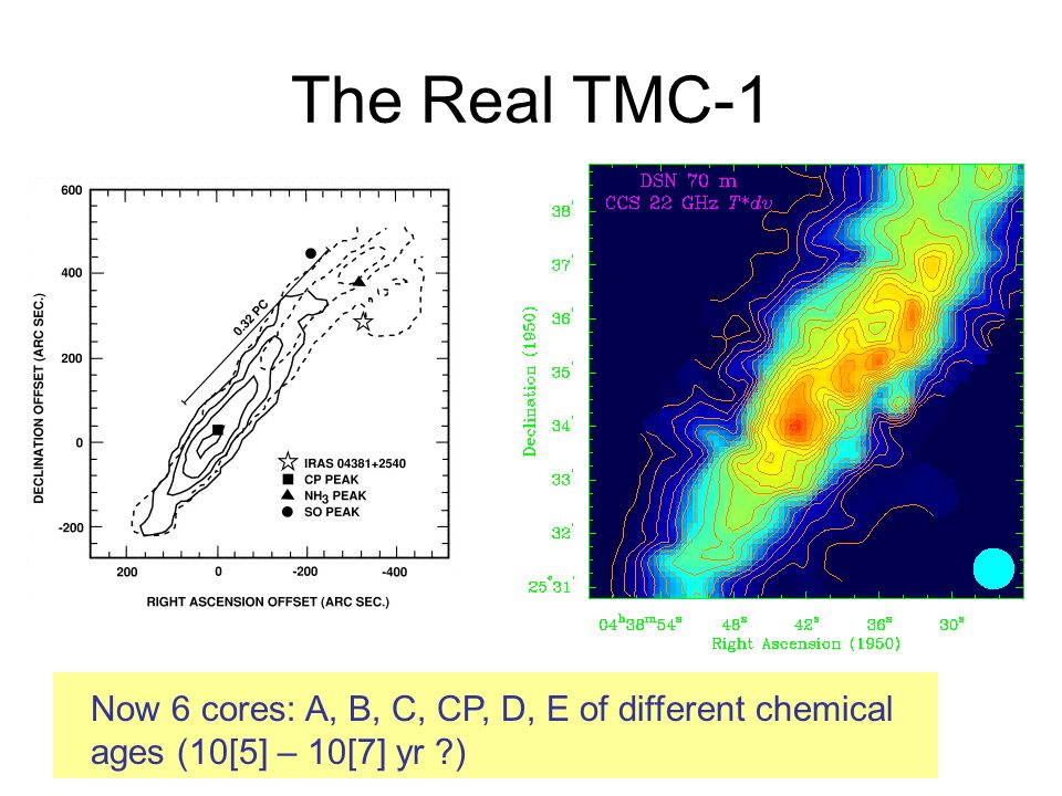 The Real TMC-1 Now 6 cores: A, B, C, CP, D, E of different chemical ages (10[5] – 10[7] yr )